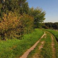 Я так хочу, что лето не кончалось :: Андрей Лукьянов