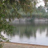 Тишина и покой у реки :: Александр Скамо