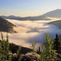 Полна долина тумана :: Сергей Чиняев