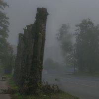 Туман упал на город- бегом снимать... :: Виктор Грузнов