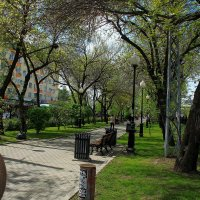 Весна идёт, весне дорогу. :: sav-al-v Савченко