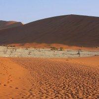 Африка.НАМИБИЯ. :: Jakob Gardok