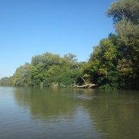 На Природе, на реке :: Сергей Анатольевич