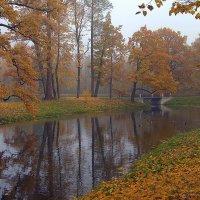 Утром в парке... :: Наталья