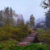 Утро туманное :: Игорь Ушаков