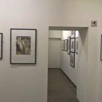 На выставке :: Митя Дмитрий Митя