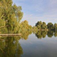 У Дона у реки. :: Виктор