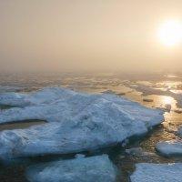 Туманный закат во льдах :: slavado