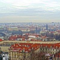 И в ненастный день Прага красива. :: Андрей Иванович (Aivanovich-2009)