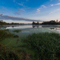 Сентябрьское утро на реке Дубне. :: Виктор Евстратов