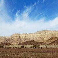 В пустыне Арава :: Raduzka (Надежда Веркина)