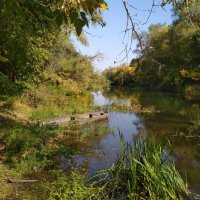 Река Ворона :: Юрий Кирьянов