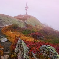 горный туман :: Elena Wymann