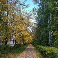 ...осень :: Алена