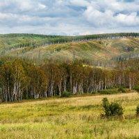 Начало красивых и высоких сибирских Саянских гор... :: Владимир Деньгуб