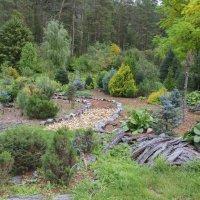 Ботанический сад :: Алексей Павленко