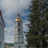 Колокольня Николо-Шартомского монастыря :: Сергей Цветков