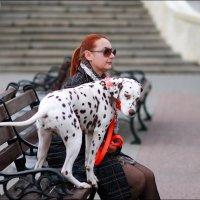 Дама с собачкой :: Анатолий Винник