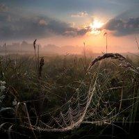 Рассвет,туман,сентябрь.... :: Андрей Войцехов