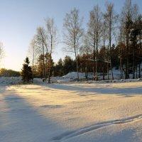 Зимнее утро :: Vyacheslav Gordeev