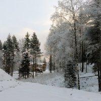 Зима :: Vyacheslav Gordeev
