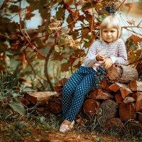 Осень. Унылая пора. :: Алёна Дуклер