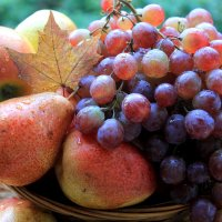фрукты :: Горкун Ольга Николаевна