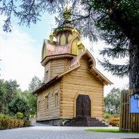 Скорбященская церковь :: Георгий А