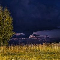 Вечер за околицей, там где ты идёшь :: Владимир Максимов