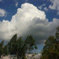 Перемена погоды :: Геннадий Худолеев