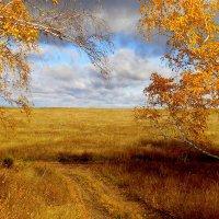 Осени дороги золотые. :: nadyasilyuk Вознюк