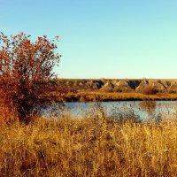 Гуляет осеньу реки. :: nadyasilyuk Вознюк