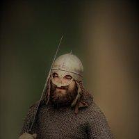 С мечом и щитом... :: Александр Зотов