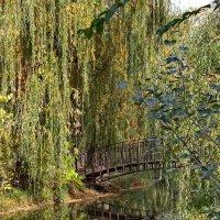 Осень в старом парке :: Анатолий Стрельченко