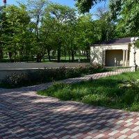 Сцена в парке :: Cissa Andebo