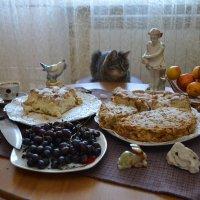 Котейно-кофейная картинка...Торты или коты...Ждёмссс... :: Хлопонин Андрей Хлопонин Андрей