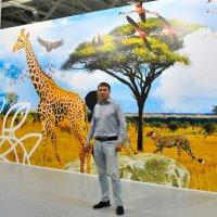 Фотовыставка Золотая Черепаха. :: Валерий Шурмиль