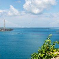 Вид с крепости Йорос на 3-й Босфорский мост. :: Оксана Лада