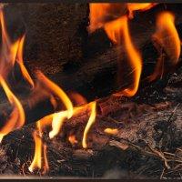 Языки пламени :: Марина Никулина