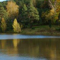 Осенний миг солнышка :: Зинаида Каширина
