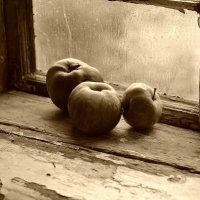 Натюрморт с яблоками. :: Эника.