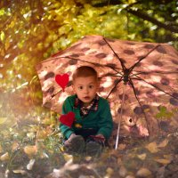 Осень :: Ольга Хорьякова