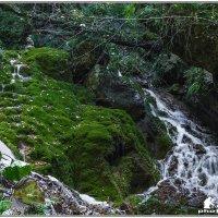 ручьи в Тызыльском ущелье :: Александр Богатырёв