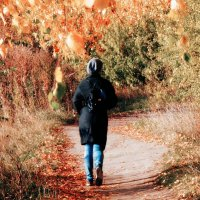 Leaving in autumn.... :: Андрей Головкин