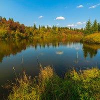 Золотая осень :: Сергей Винтовкин