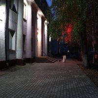Утро у Белого Дома... :: Александр Широнин