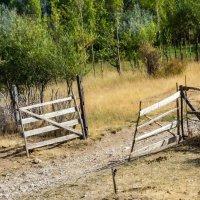 Ворота :: Oleg Sharafutdinov