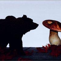 Тихая охота. :: Анатолий Бахтин