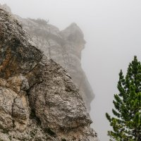 Доломитовые Альпы. Кортина д'Ампеццо. На горе Фалория. :: Надежда Лаптева