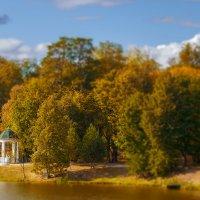 настроение осень... :: Сергей Александрович